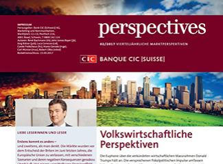 CIC perspectives 02/17