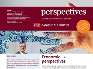 CIC perspectives 01/17