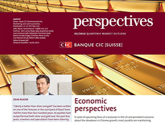CIC perspectives 02/16