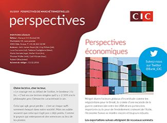 CIC perspectives 01/19