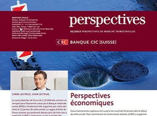 CIC perspectives 02/15