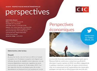 CIC perspectives 02/19